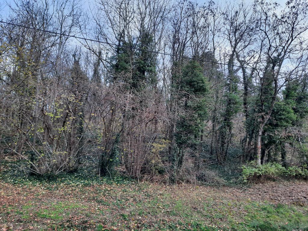 LEYMENT - Terrain non constructible 503 m² pour bois de chauffe