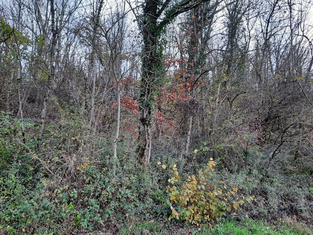 LEYMENT - Terrain non constructible 348 m² pour bois de chauffe