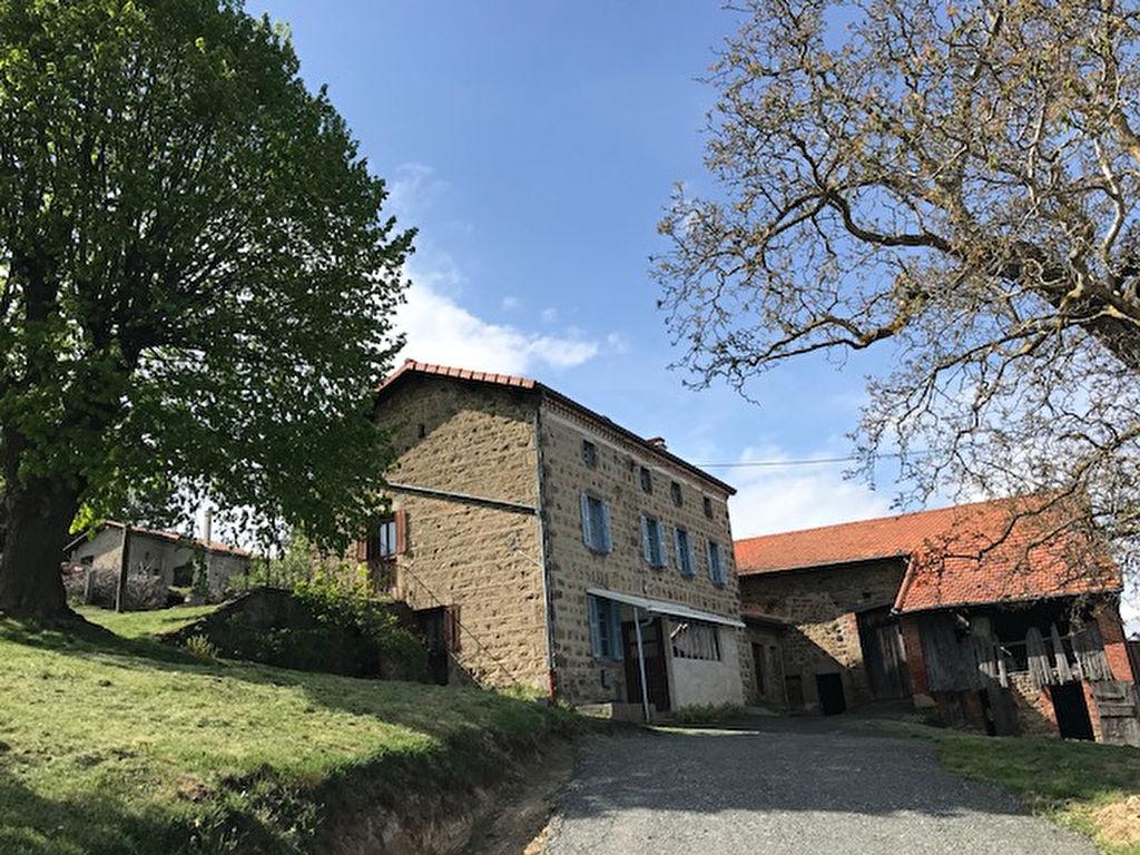 18mn MONTBRISON corps de ferme en pierre sur 3650 m²