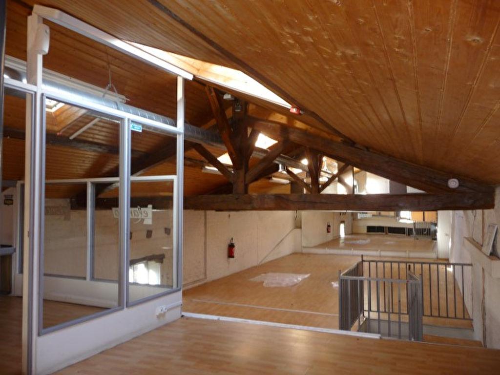 MAISON EN PIERRES DE 500 m2 POITIERS OUEST BEAU POTENTIEL
