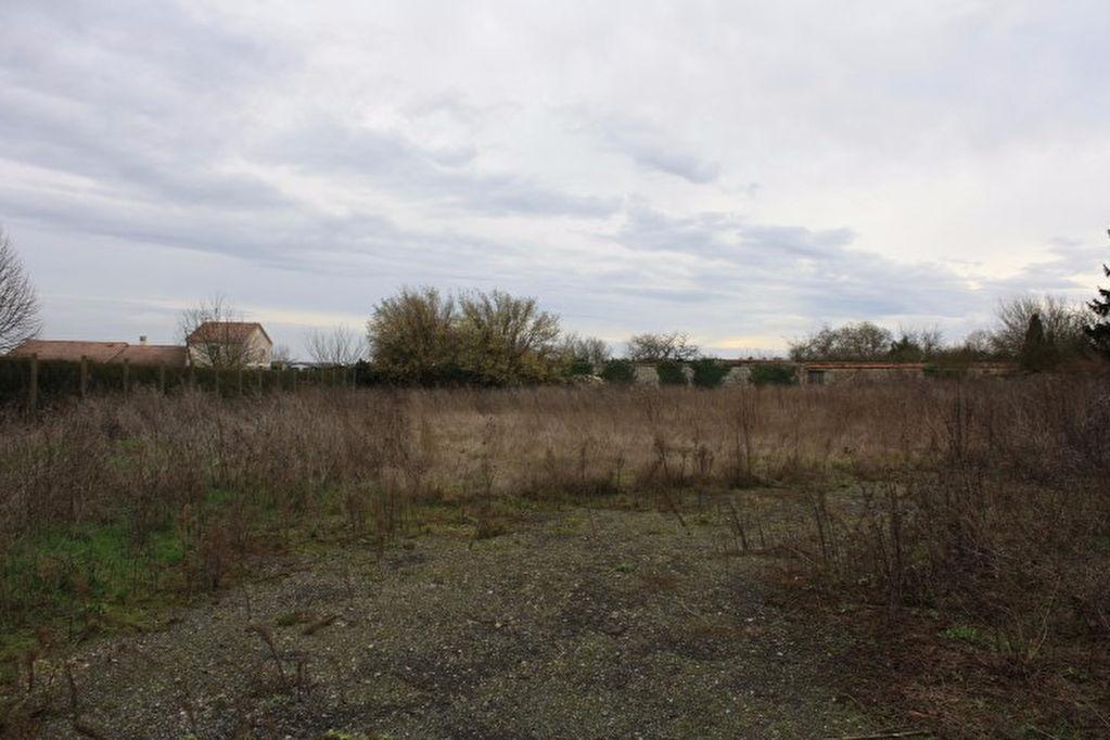 CHAMPIGNY EN ROCHEREAU GRAND TERRAIN CONSTRUCTIBLE ET DIVISIBLE DE 2390 M2