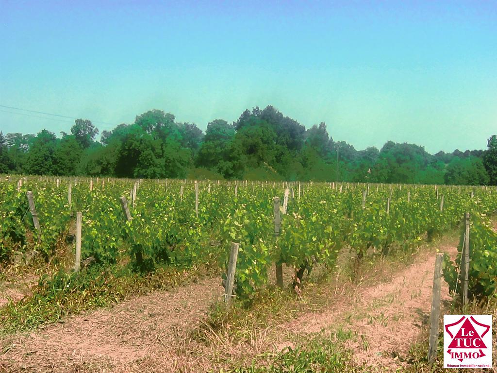 Propriété viticole - 20 Hectares - Appellation Cotes de BOURG