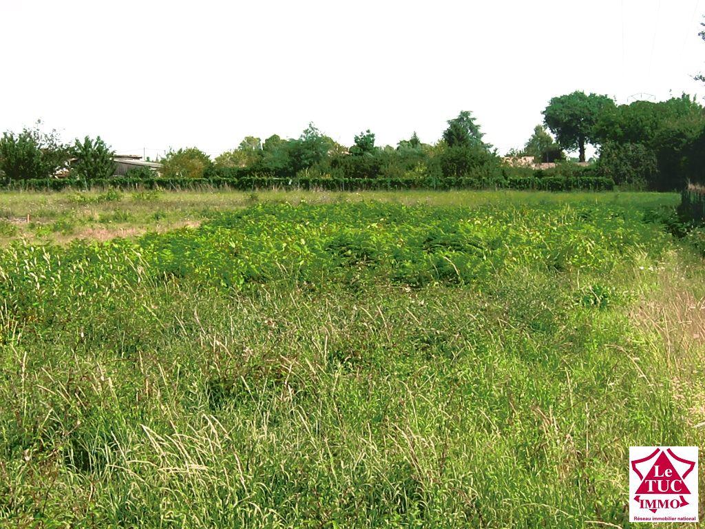 Terrain à batir viabilisé 1288 m² - Bourg sur gironde