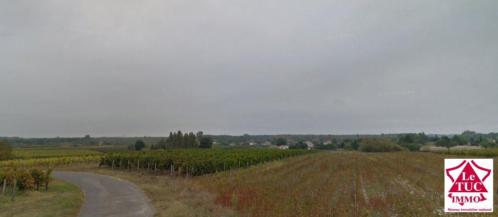 Parcelles de vignes 1 ha 48 a 57 ca et 58 a 26 ca Blaye Côte de Bordeaux